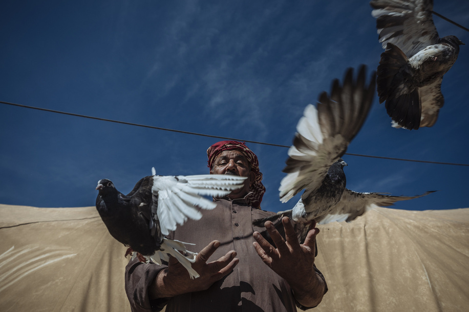 "As heavily armed ISIL fighters poured into their village in 2014, Abu Jassim and his family had enough time to grab their identity cards, their pigeons and flee.   The 49-year-old father of three had farmed the lands around Yathreb, a governorate 90km north of Baghdad, all his life. Nothing prepared him or his neighbours for a life removed from all that was familiar. The family had hoped their displacement would only be temporary, but days became weeks as they travelled from one place to the next until, three months later, they finally found sanctuary in Ahsty camp, Sulaimaniyah.   And through all the hardships his family faced on the road, Abu Jassam managed to keep his birds alive, a comforting reminder of home before they took flight.   ""When we fled, I put my eight pigeons in a small cage and carried them with us throughout our displacement journey,"" he recalls. ""I couldn't leave them behind, I loved them too much.""  The camp located outside town is adequate. It's quiet, provides some basic amenities like modest schools for the children and has sufficient water, but the residents live in tents with little to do but relive the the trauma of their forced movement and the memories of the lives they left behind.  Despite having his beloved pigeons with him, camp life feels like a prison for a family used to living on a vast, open plain. But, Abu Jassim still prefers the safety here to returning to Yathreb where his house was razed and security remains an issue.   ""Even if we returned, I would have to start from scratch. I don't know when I will be able to rebuild my life, build a new house, buy a car, and get new livestock,"" he says.  ""The most difficult part is the lack of job opportunities. The only work I get is from the municipality as a daily worker for only 2,000 Iraqi dinars per day (about USD 1.50), while a regular daily worker gets at least ten times this amount. This is very humiliating for me, but I accept it for the sake of my family. I need to feed my family.""   He has managed to create a tiny coop outside the tent for his growing brood.  ""My pigeons have had squabs since then, and I now have over 40! I often just sit here in my tent and watch my birds through this little window,"" he says.  ""It helps me relax. They remind me of everything I loved about my life in Yathreb: my farm, the fields, the livestock, having family and friends around me. I am so attached to my pigeons now that they are like a part of the family."