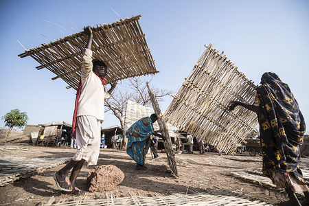 Beneficiaries collecting bamboo-thatched walls to install onto their shelters