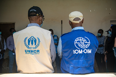 UNHCR and IOM listen side by side during a discussion with other UN agencies.